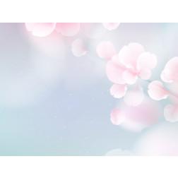 Blue & Pink Sakura Flowers - Sample Kit