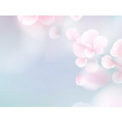Blue & Pink Sakura Flowers