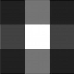 Buffalo Check Pattern - Sample Kit-B&W