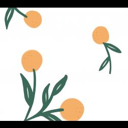 Oranges Pattern - Sample Kit